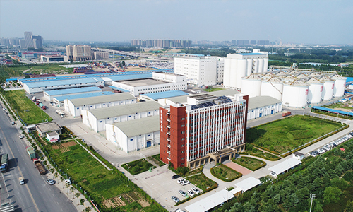 Flour Milling Project in China